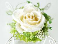 flower36_600x450.jpg