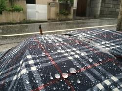 ブログ 雨